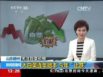 CCTV新闻频道对我合作社专访
